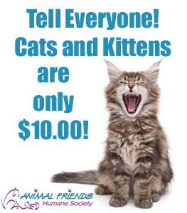 $10 Cat Adoptions with Animal Friends Humane Society