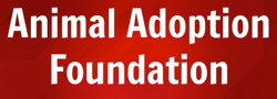 Animal Adoption Foundation
