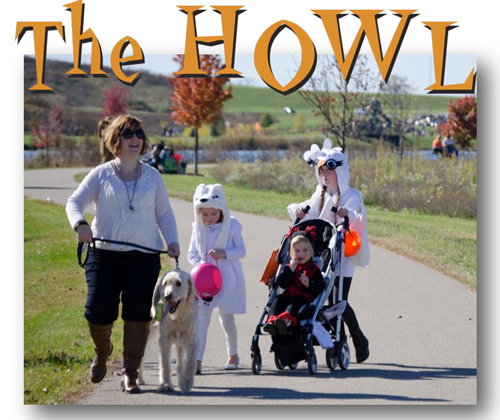 Trick or Treat with Your Dog this Sunday!