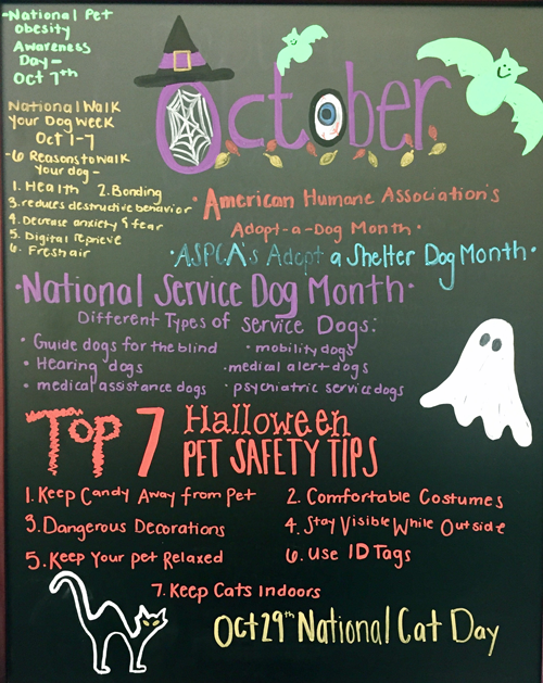 October Pet Themes