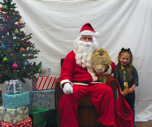 FREE Pet Picture with Santa