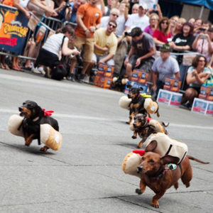 Get in the Oktoberfest Spirit with the Running of the Weiners!